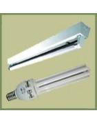 Bombillas CFL y Fluorescentes
